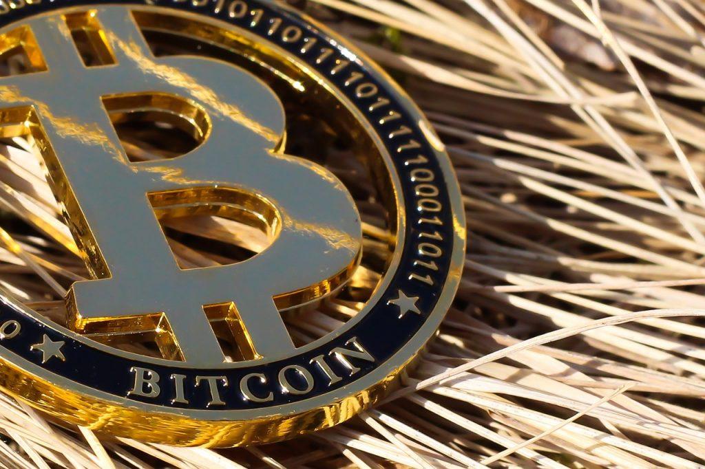 bitcoin brasil criptomoedas
