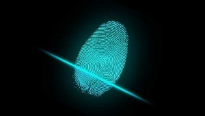 pirâmide unick polícia federal pf bitcoin indiciado