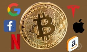bitcoin-ftx-ações-comprar-investir-pares-amazon-google-netflix-tesla-apple