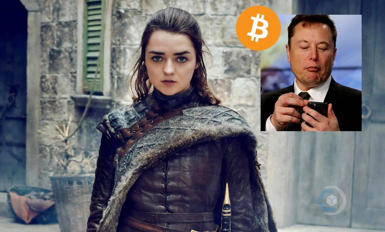 bitcoin-arya-stark-game-of-thrones-elon-musk-btc-criptomoedas-notícias-twitter-comprar-investir