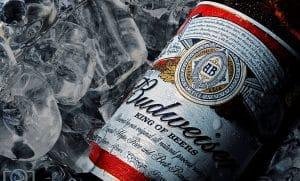 budweiser-cerveja-inbev-ambev-blockchain-bitcoin-tecnologia-produção-negócios-cervejaria-notícias
