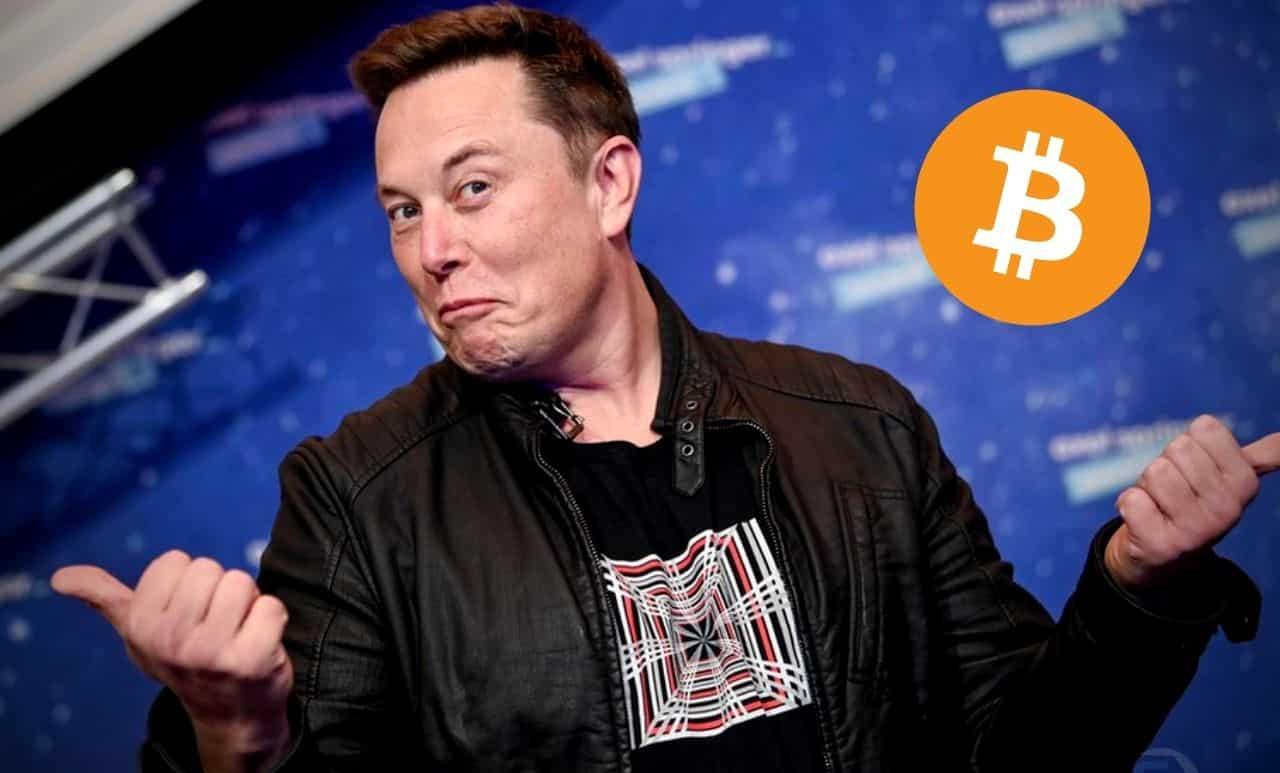 bitcoin trader elon musk