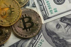Quanto tempo vai durar a corrida do touro do Bitcoin?