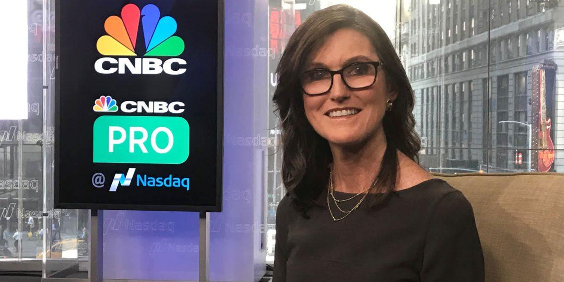 Cathie Wood - Ark Investi ; bitcoin e criptomoedas