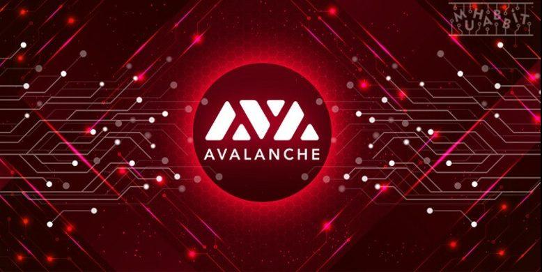 avax-avalanche